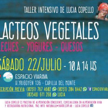 Taller intensivo 'lácteos vegetales' con Lucía Copello #Vacaciones2017