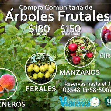 Tercera compra comunitaria de Árboles Frutales